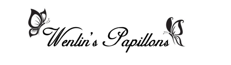Wenlin's Papillons